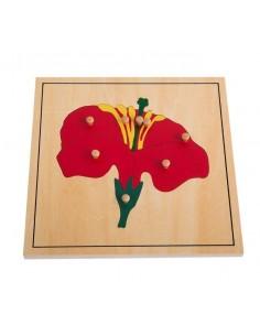 Puzzle de la fleur haut de gamme