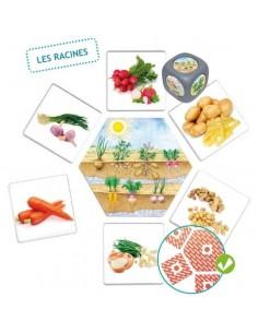 Jeu d'association les Aliments