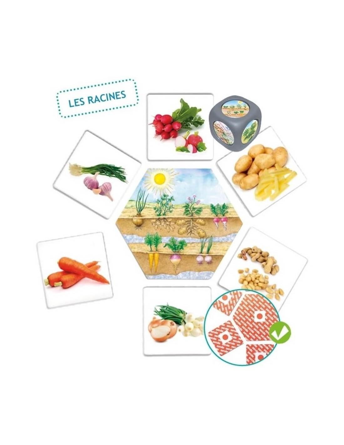 jeu d 39 association les aliments montessori s 39 amuser autrement. Black Bedroom Furniture Sets. Home Design Ideas