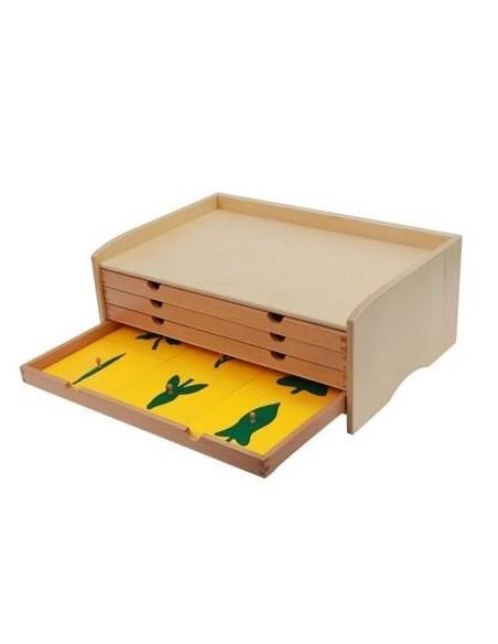 Cabinet de botanique