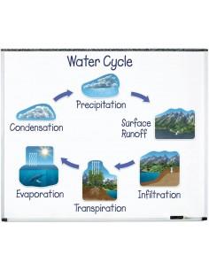 Cycle magnétique de l'eau