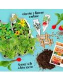 Kit Atelier Mini Potager