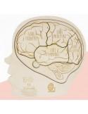 Puzzle Le cerveau humain